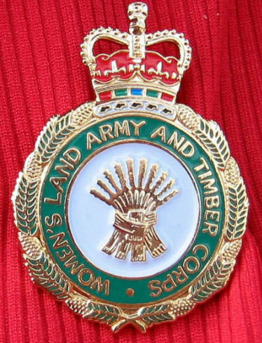 Photo Ann's  medal for war time service in the land army
