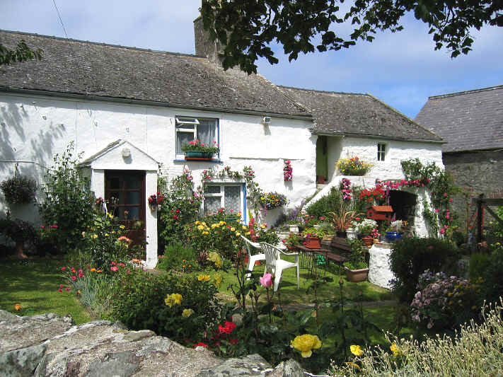 Old cottage between Llanfairynghornwy and Cemlyn with colourful garden