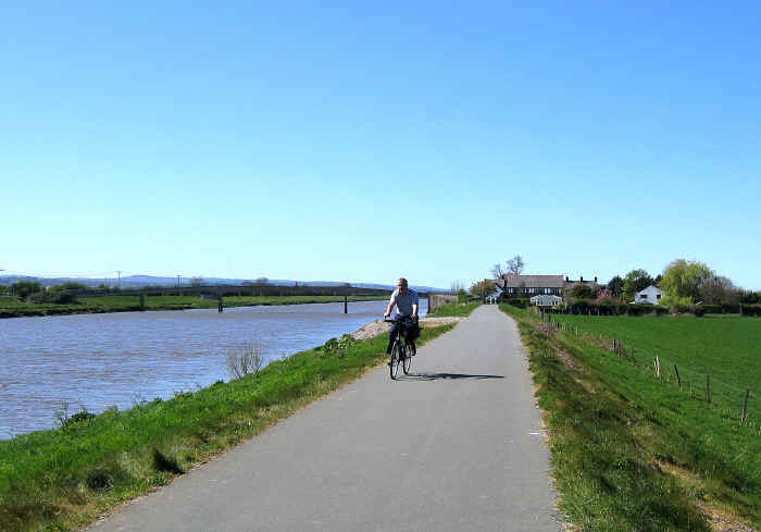 Cyclist on path by side of river Dee