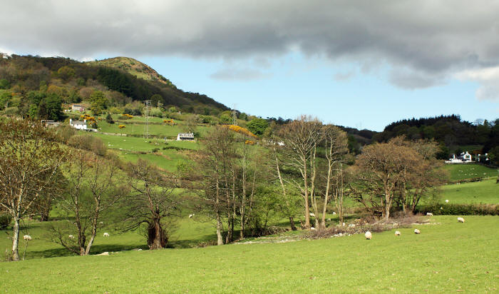 Photo of countryside near Llanbedr-y-Cennin in the Conwy valley
