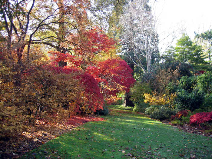 Bodnant Garden in autumn