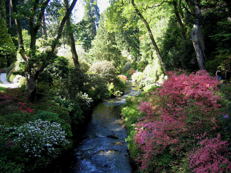 The Dell at Bodnant Garden