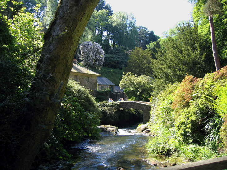 Another part of Bodnant's Dell