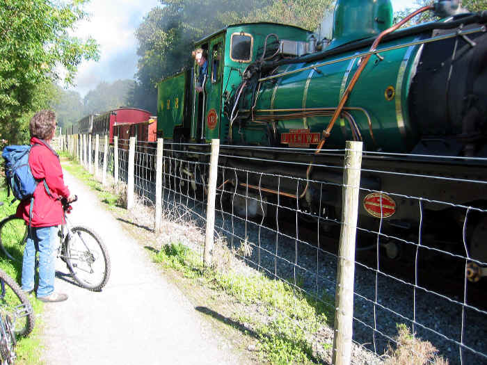 Steam engine pulling Welsh Highland Railway train directly beside Lon Eifion cycleway