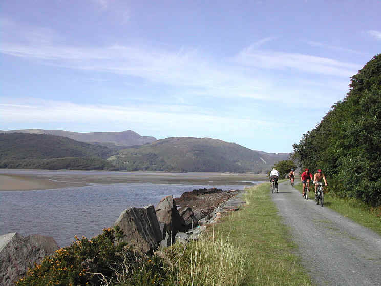 cyclists on the Mawddach Trail beside the estuary with the Rhinog hills in the background
