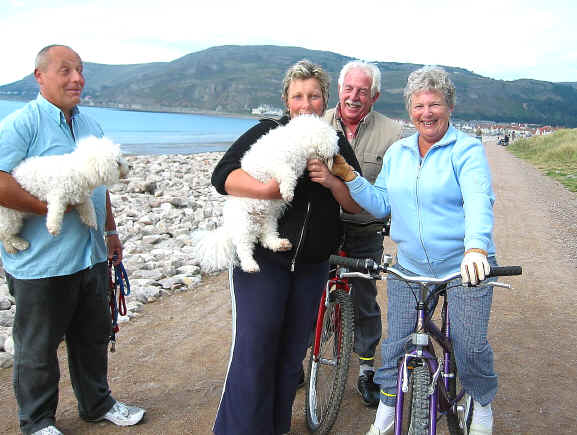 Two cyclists admire a couple of poodles