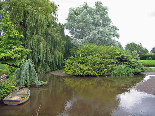 Photo of Bate's Millpond with ornamental trees and shrubs